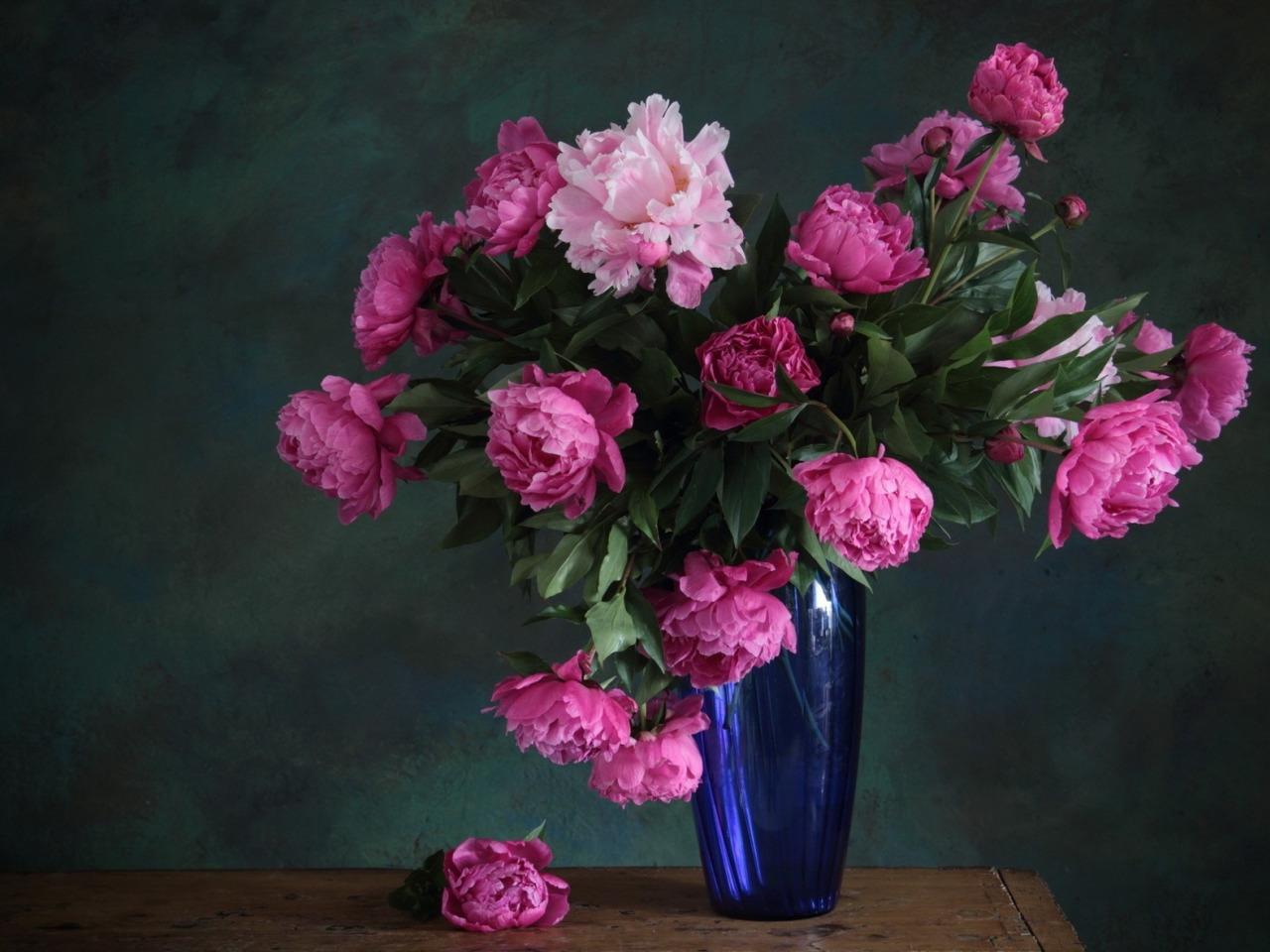 Картинки с цветами пионами, она страсти надписями