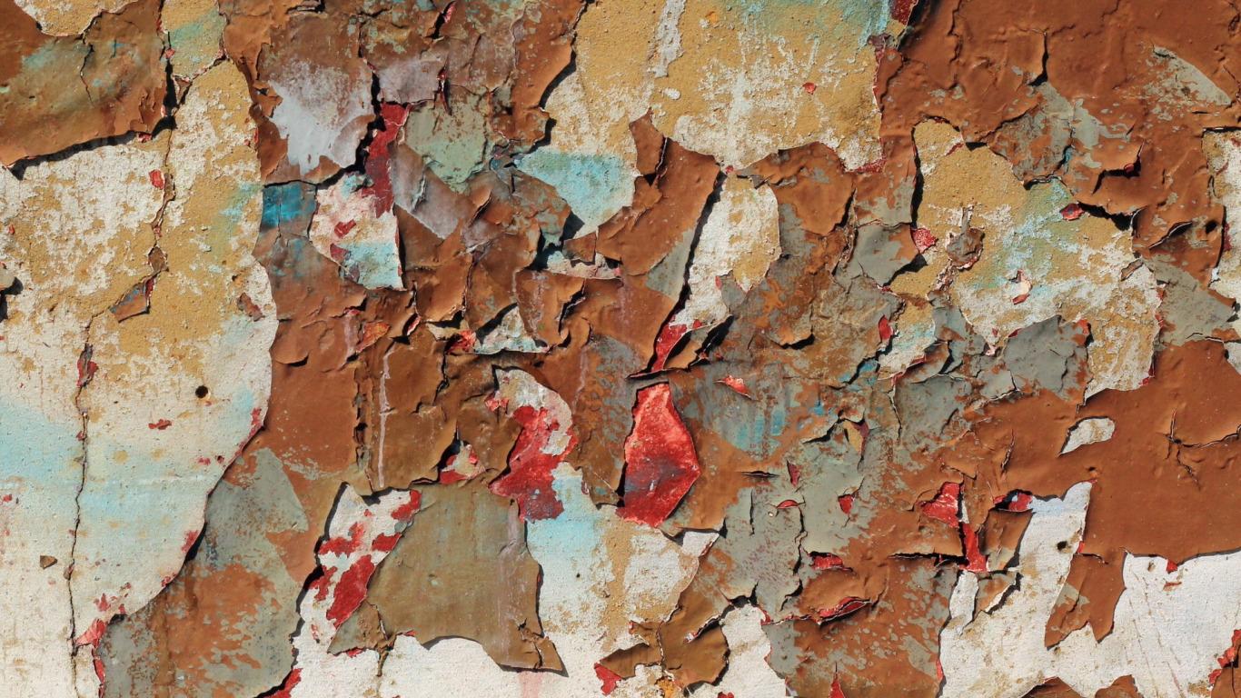 Обработка стены от плесени перед поклейкой обоев