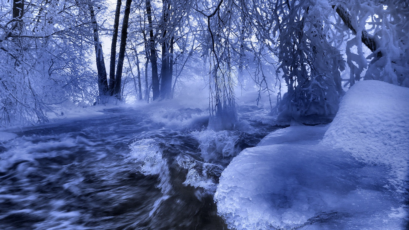 awesome nature wallpapers winter - photo #11