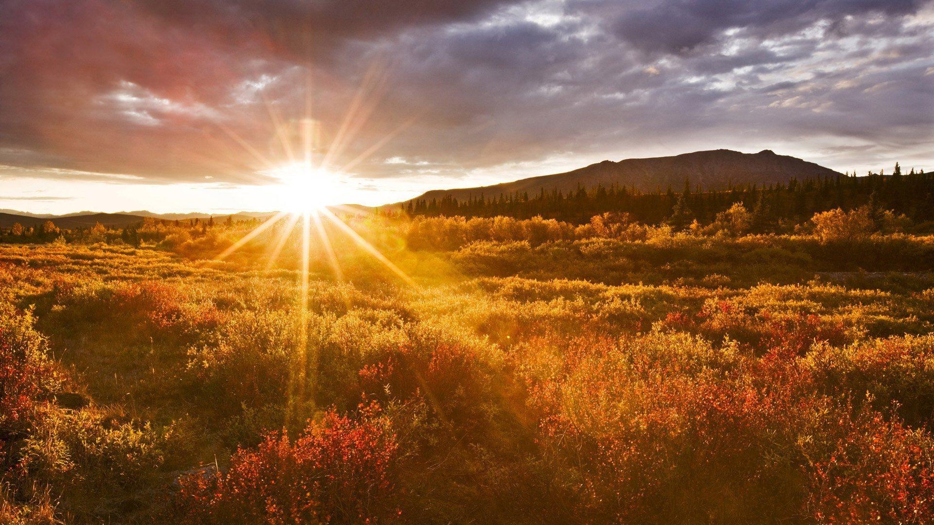 sunrise hospi sunrise hospital - HD1920×1080