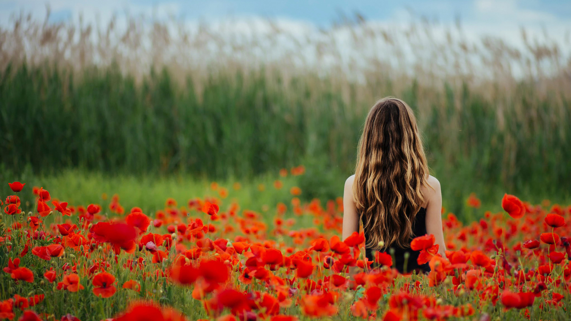 Поле девушки цветы
