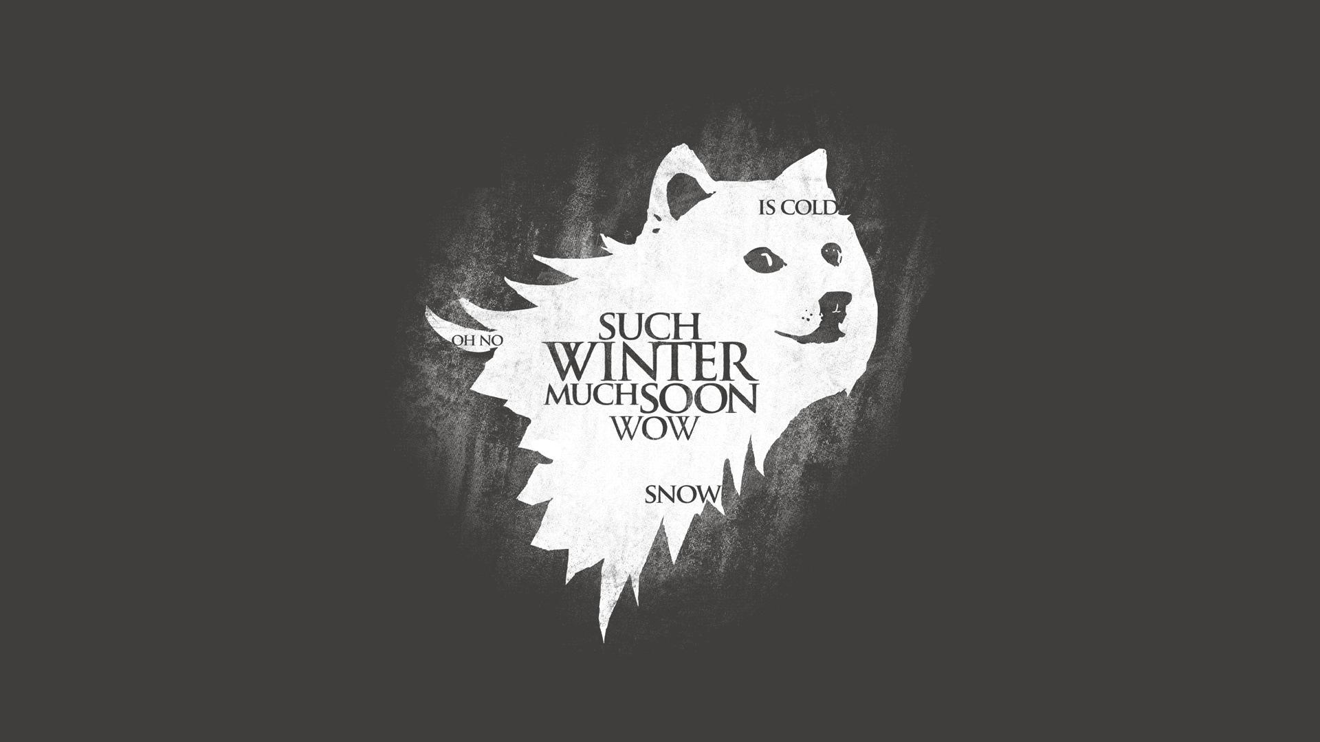 game of thrones start doge download wallpaper start, doge, game of thrones, meme, section,Doge Meme Wallpaper