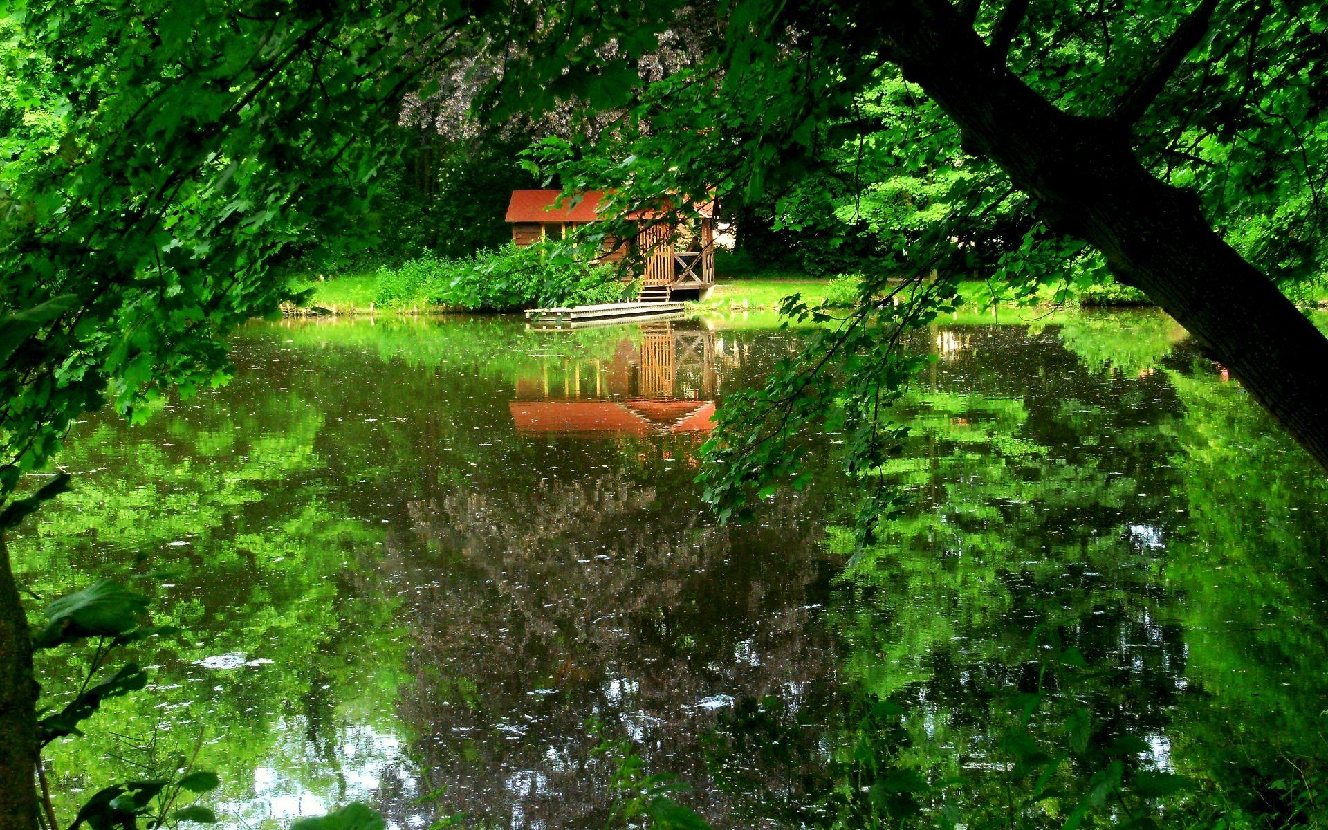 природа озеро дом лес деревья  № 2447881 бесплатно