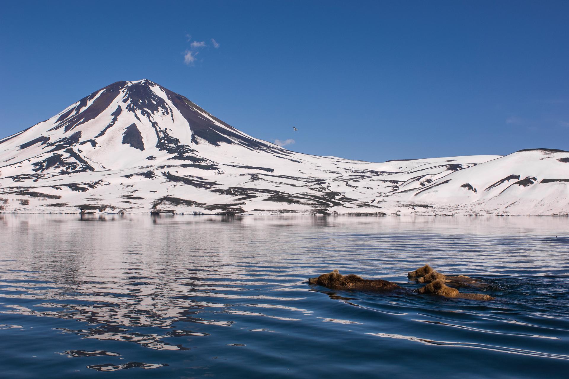 Big bear mountain webcams