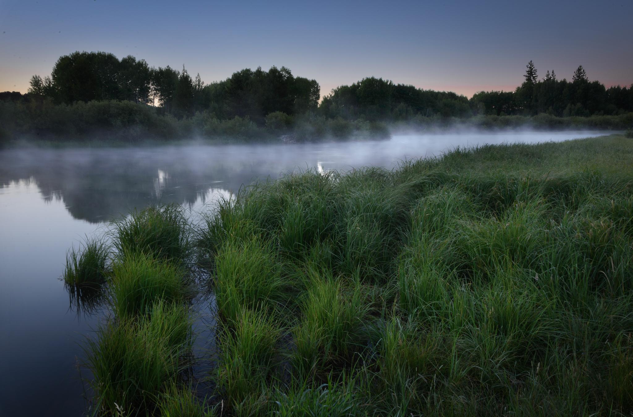 Туман вдоль реки  № 1281407 бесплатно