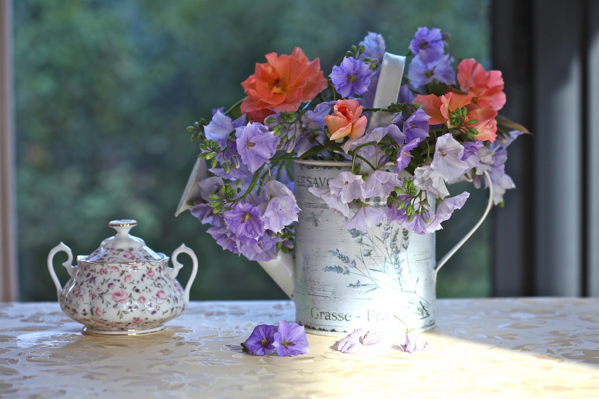 природа цветы ведро  № 464583 загрузить