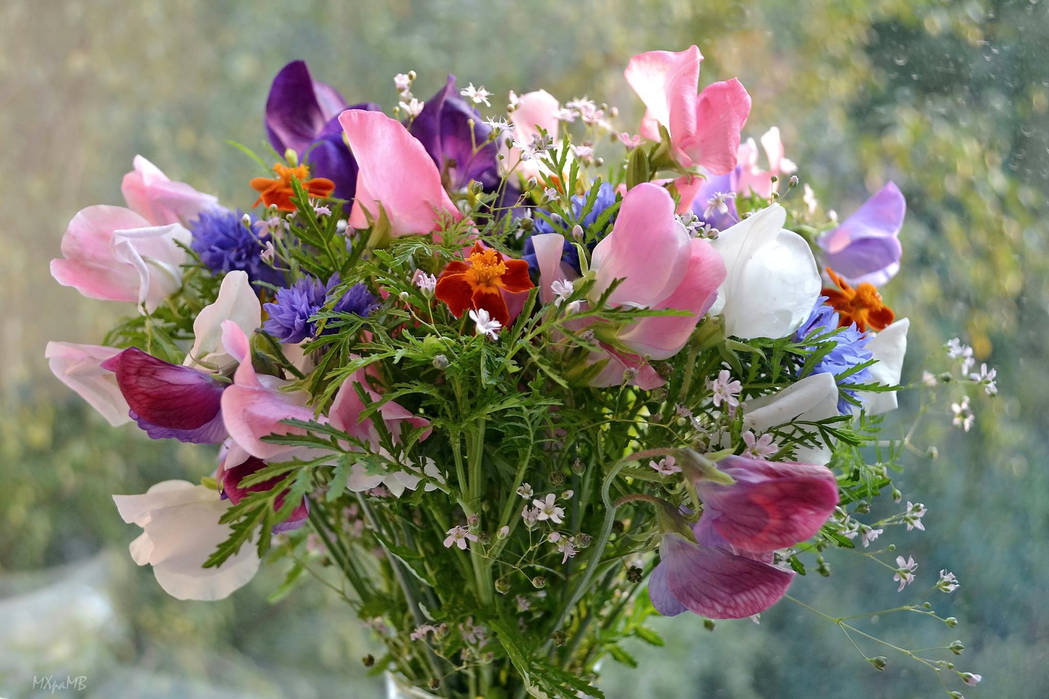 Фото красивые букеты полевых цветы цветов