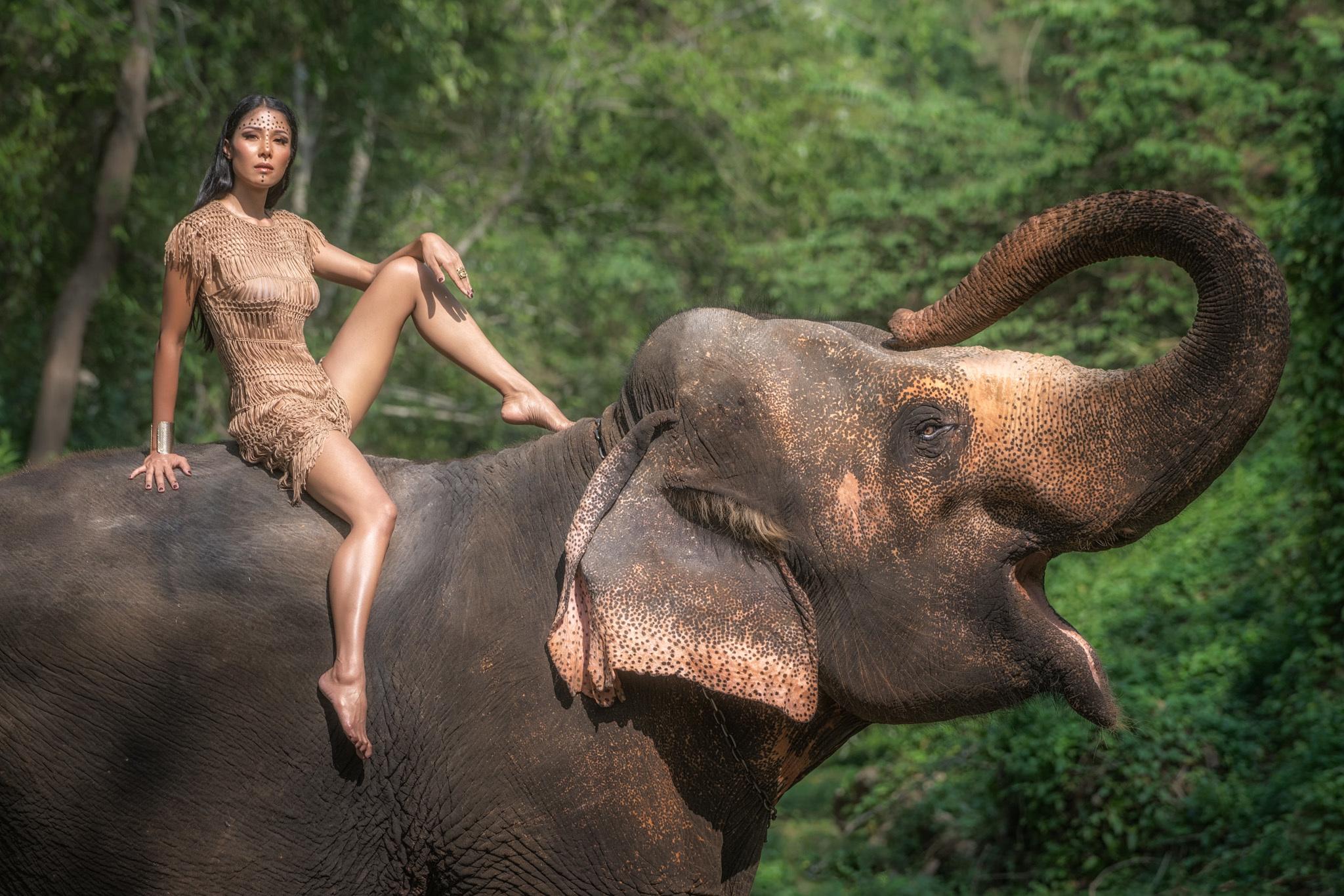elephant-girl-sax-videos-free-gomez-naked