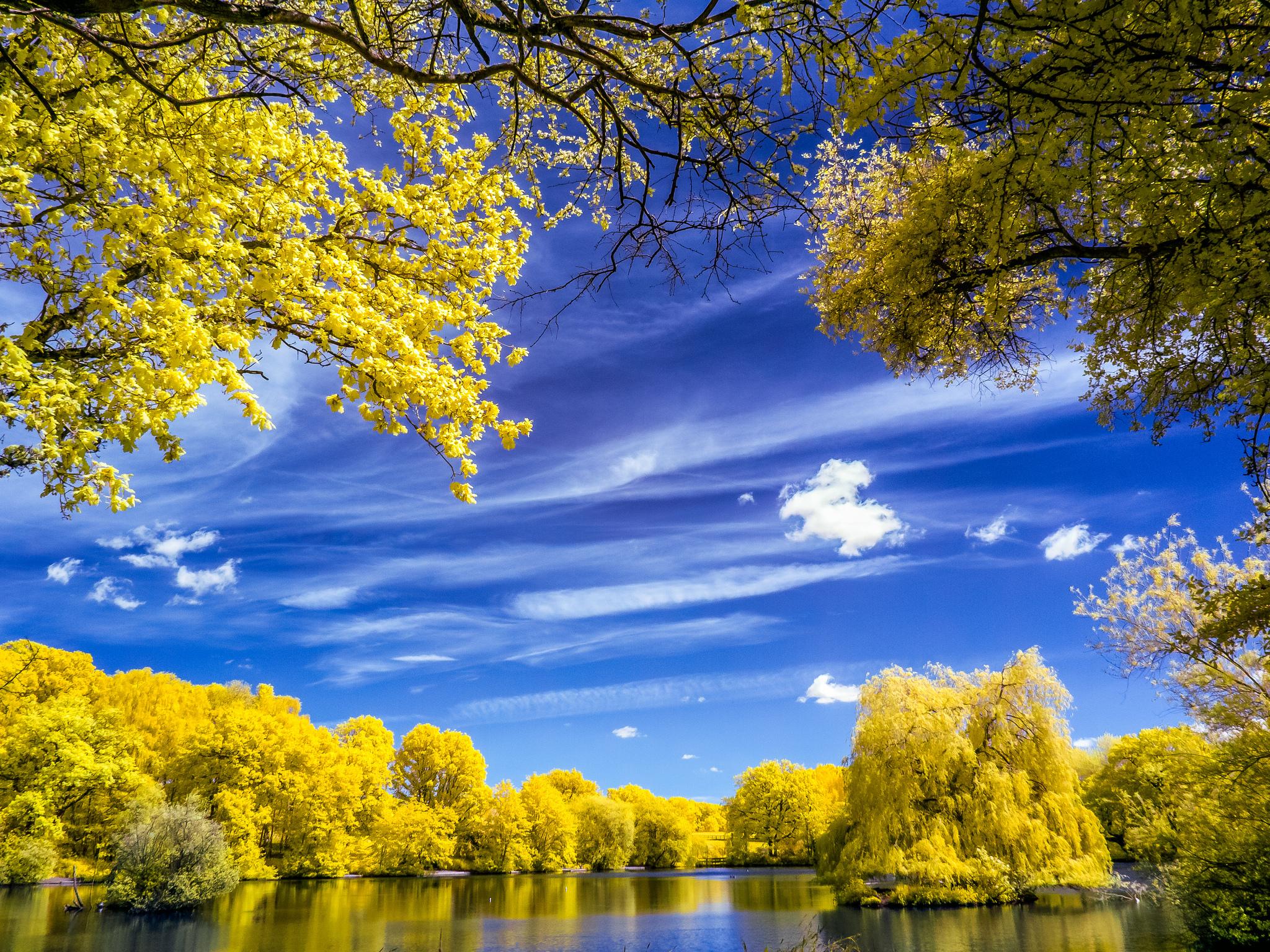 осень озеро природа облака деревья  № 2491524  скачать