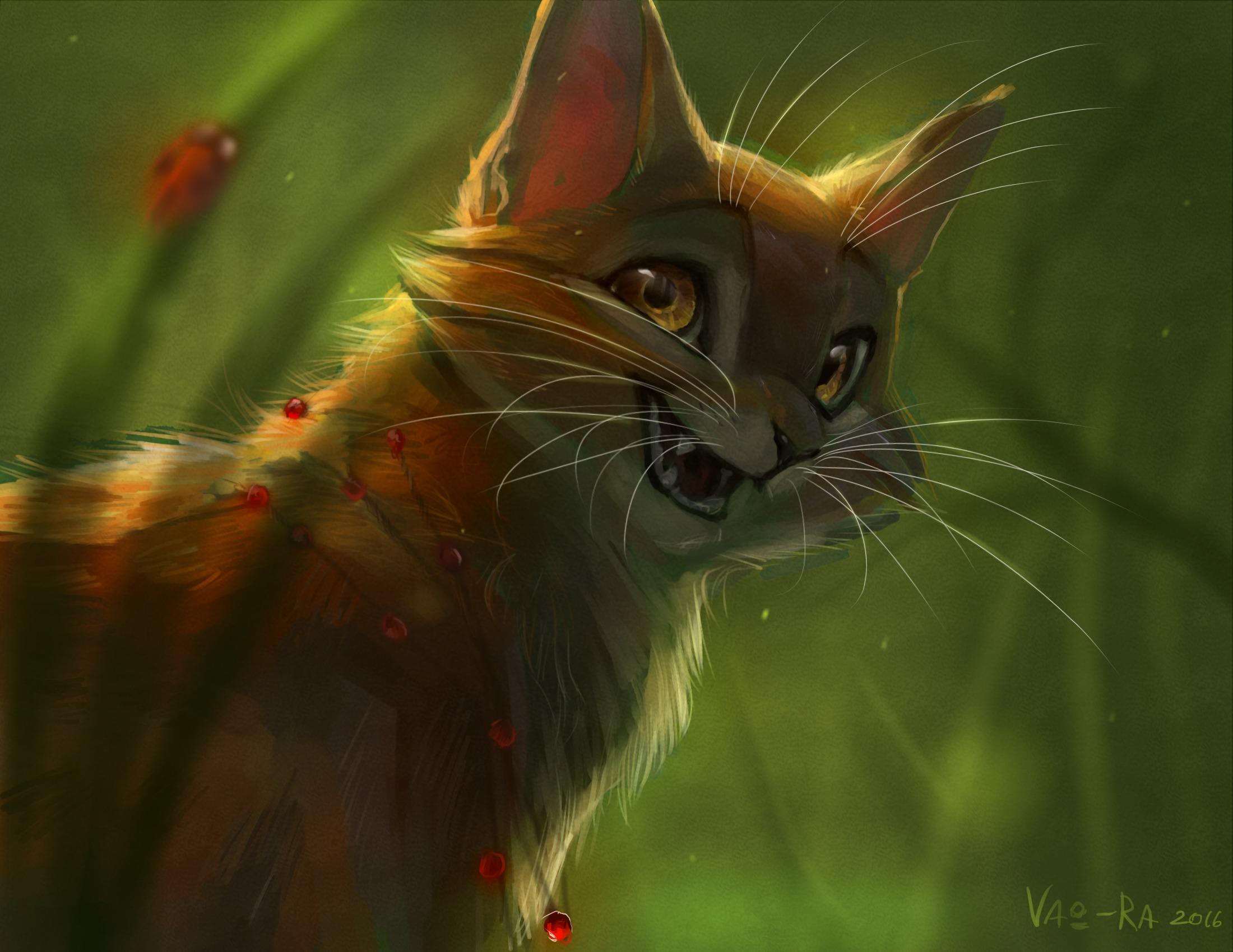 Анимационные картинки на рабочий стол коты воители
