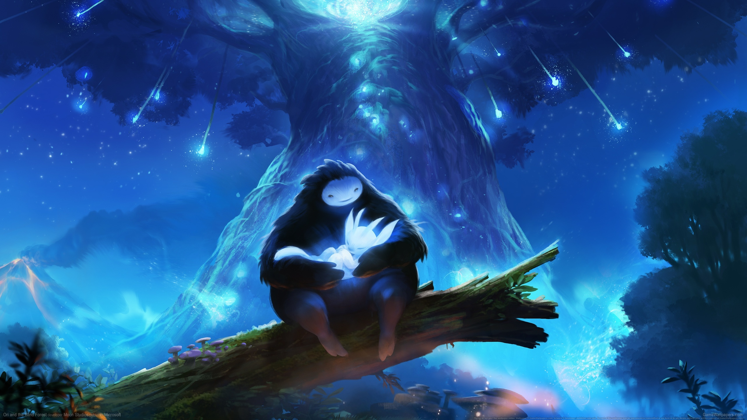 Download Wallpaper Game Indie Ori Ori And The Blind