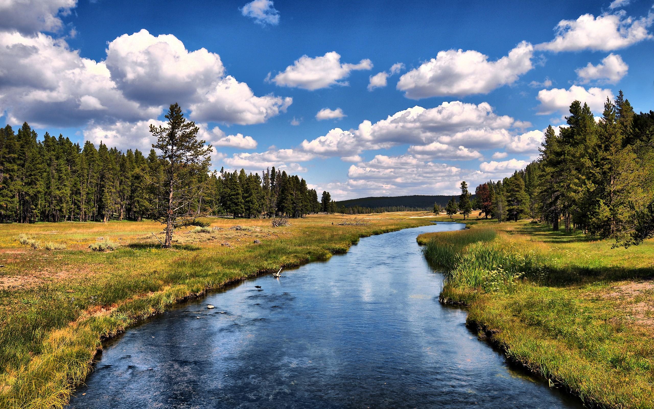 природа река деревья облака небо  № 316616 без смс