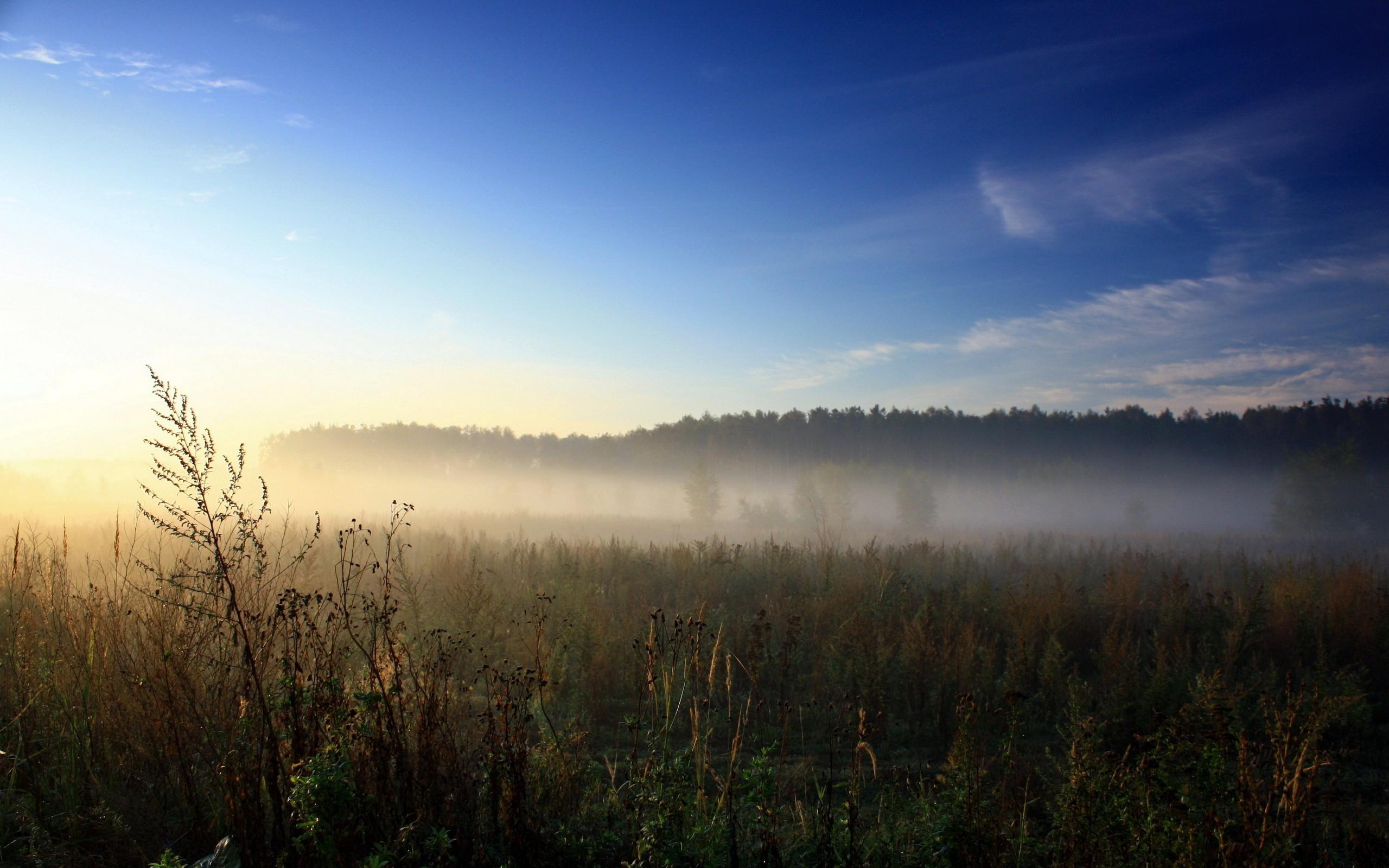 Рассвет утренний туман  № 3795933 загрузить