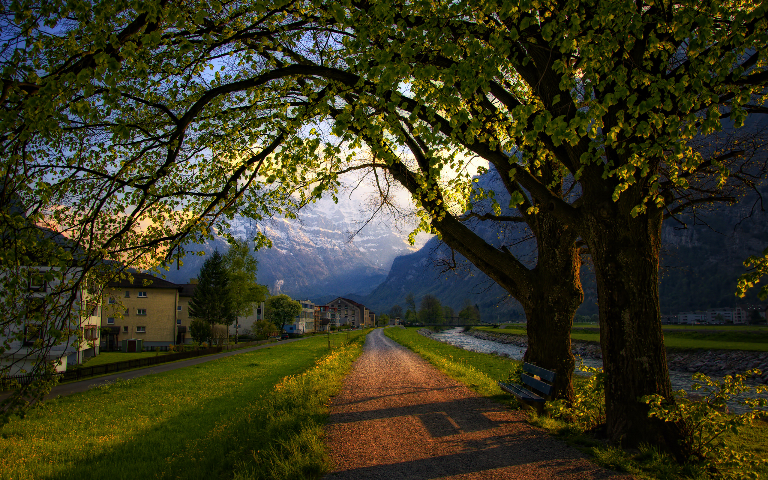 Швейцария Горы река деревья трава  № 183984  скачать