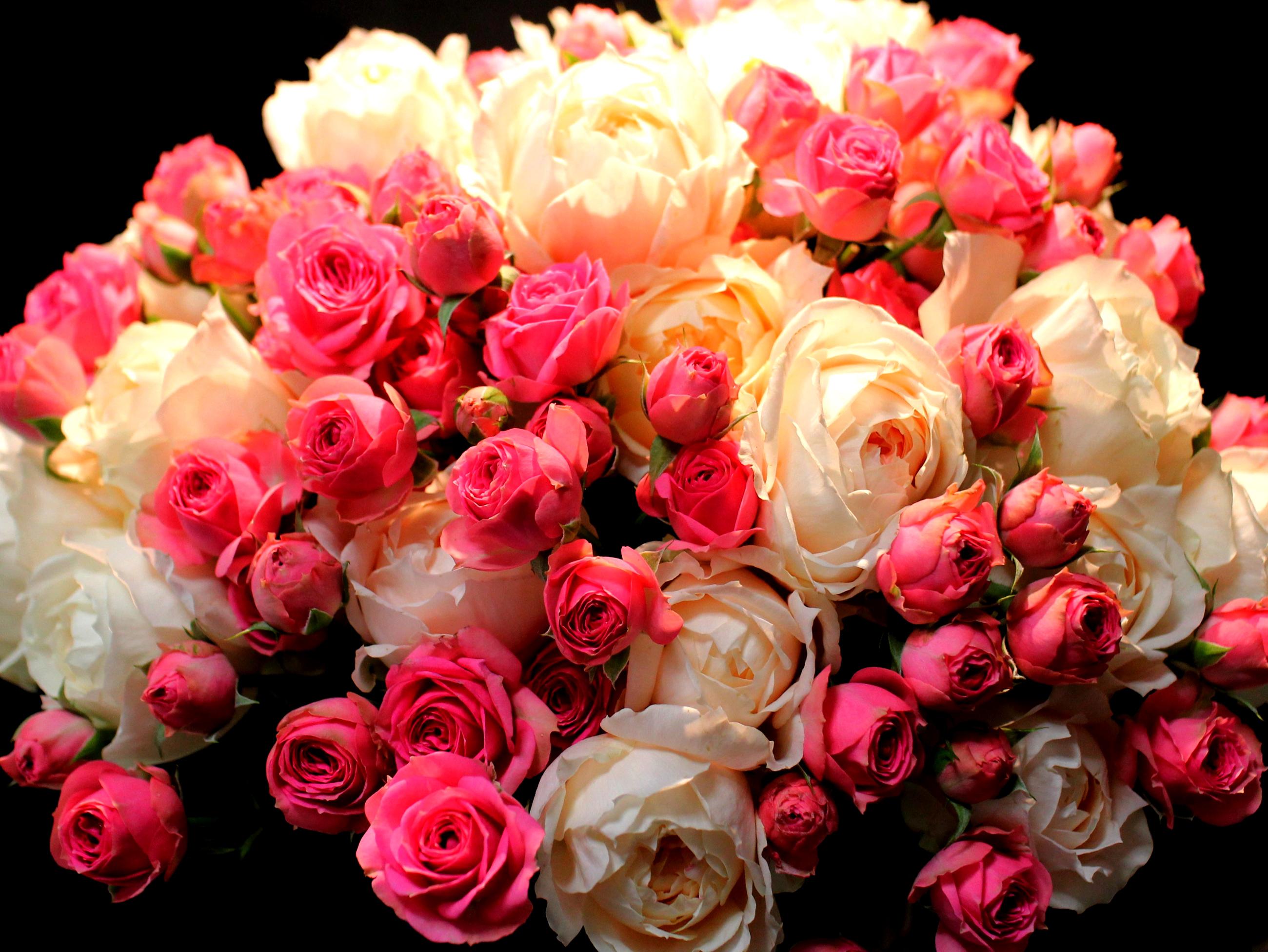 Фото цветы розы букеты большие картинки