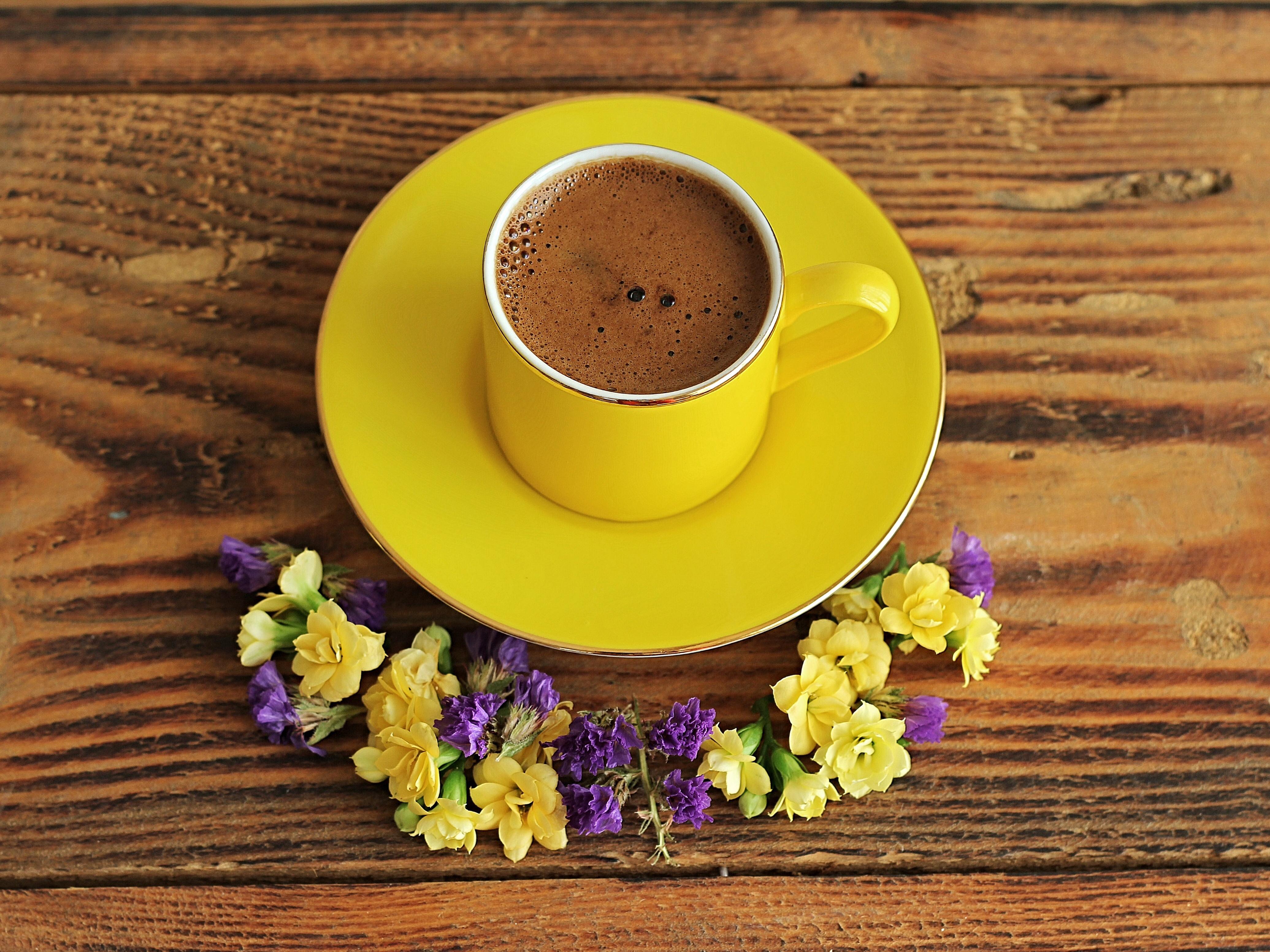 природа цветы чашка  № 1486836  скачать