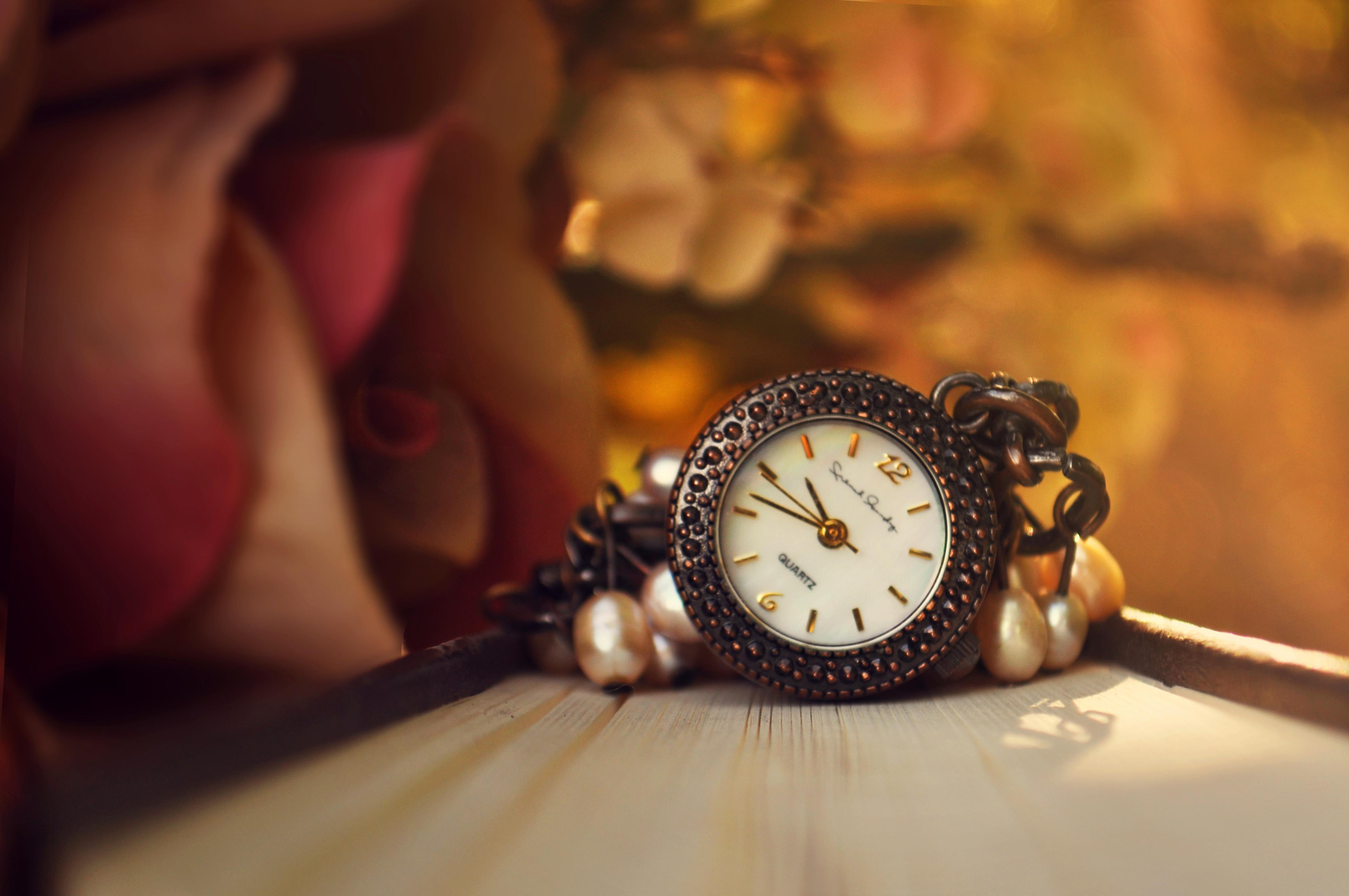 природа цветы часы  № 1520739 загрузить