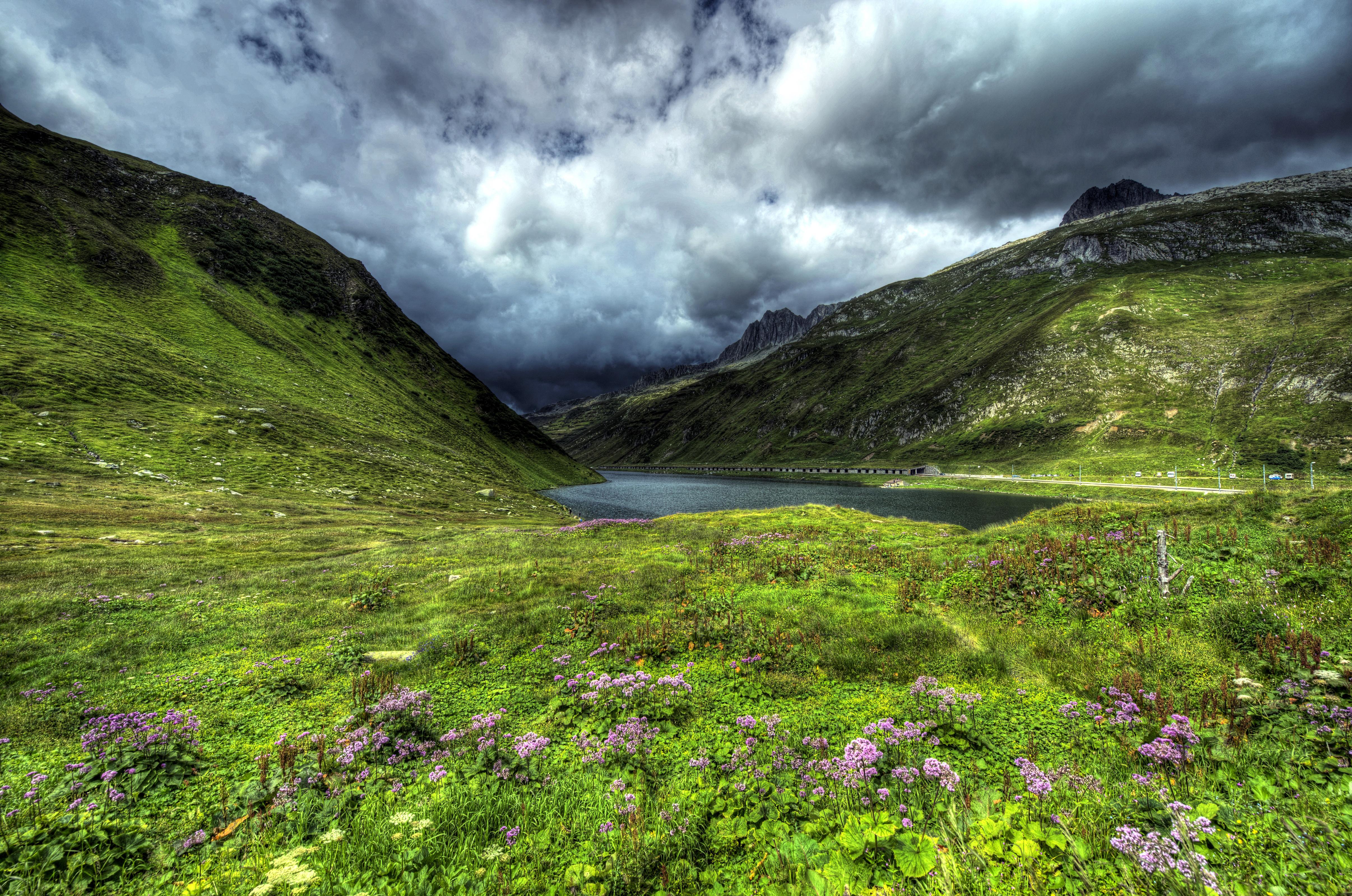 Облака, трава, цветы, озеро  № 1963164 загрузить