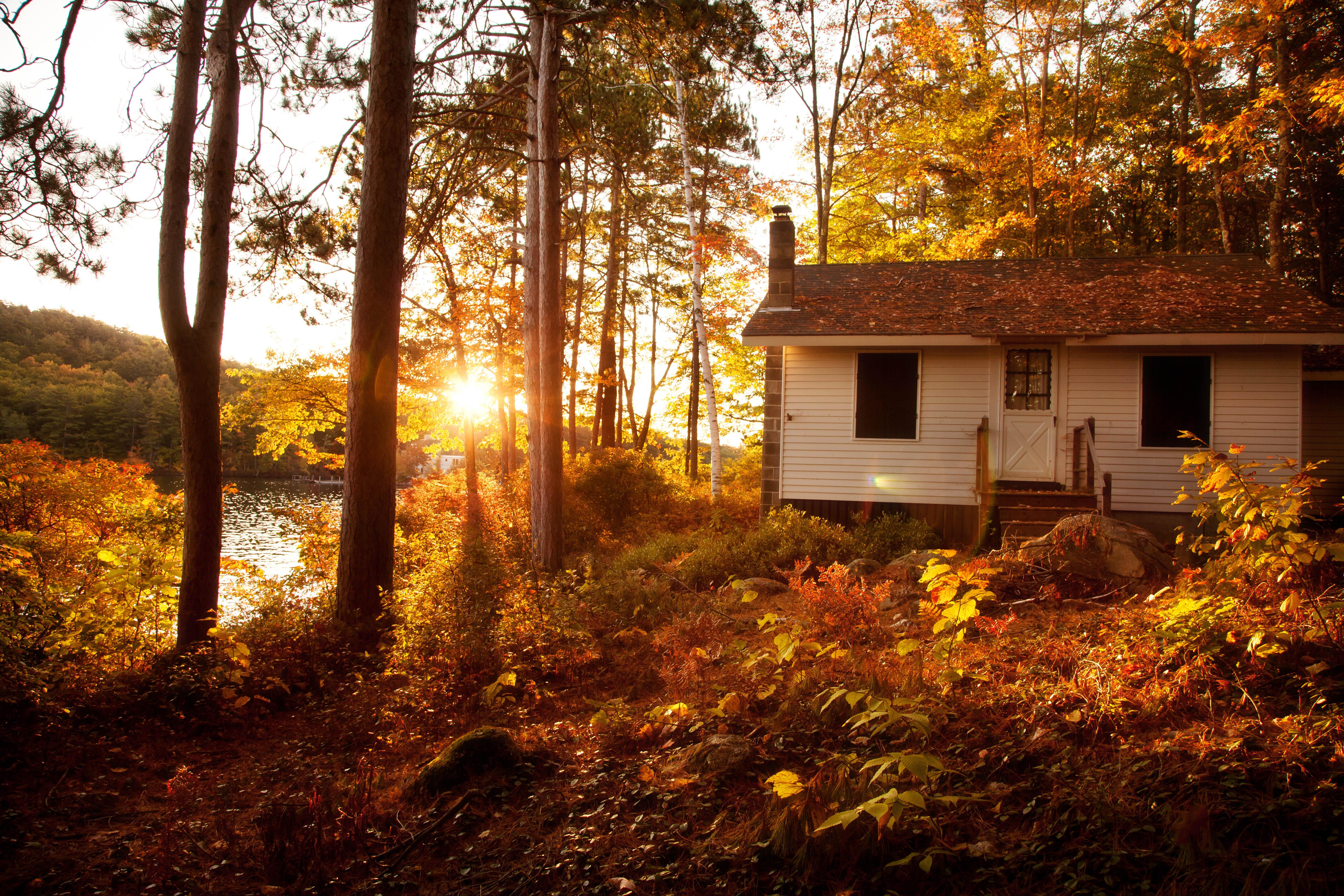 природа отдых дом деревья  № 254053 бесплатно