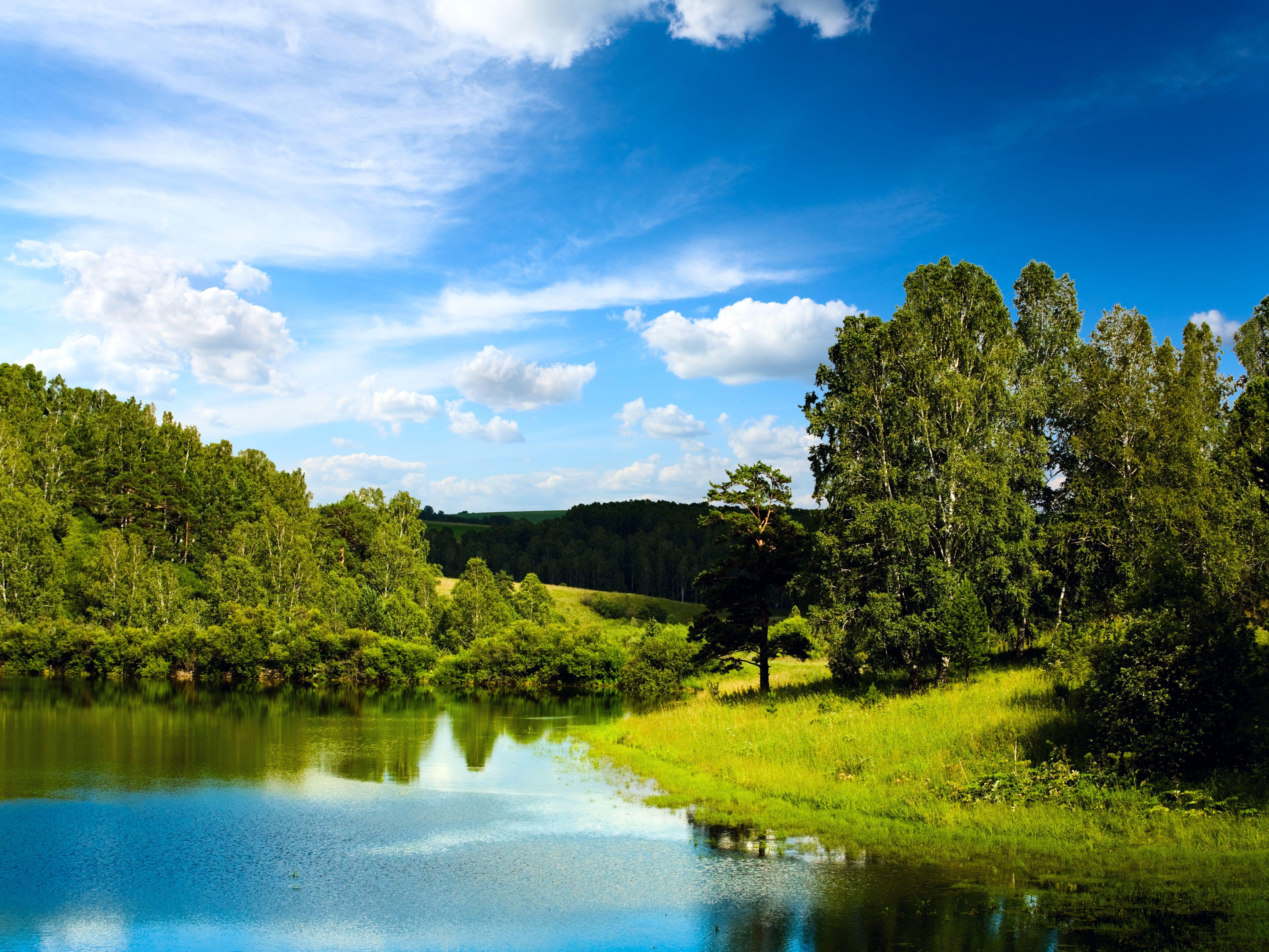 природа деревья небо река дома  № 571539 без смс