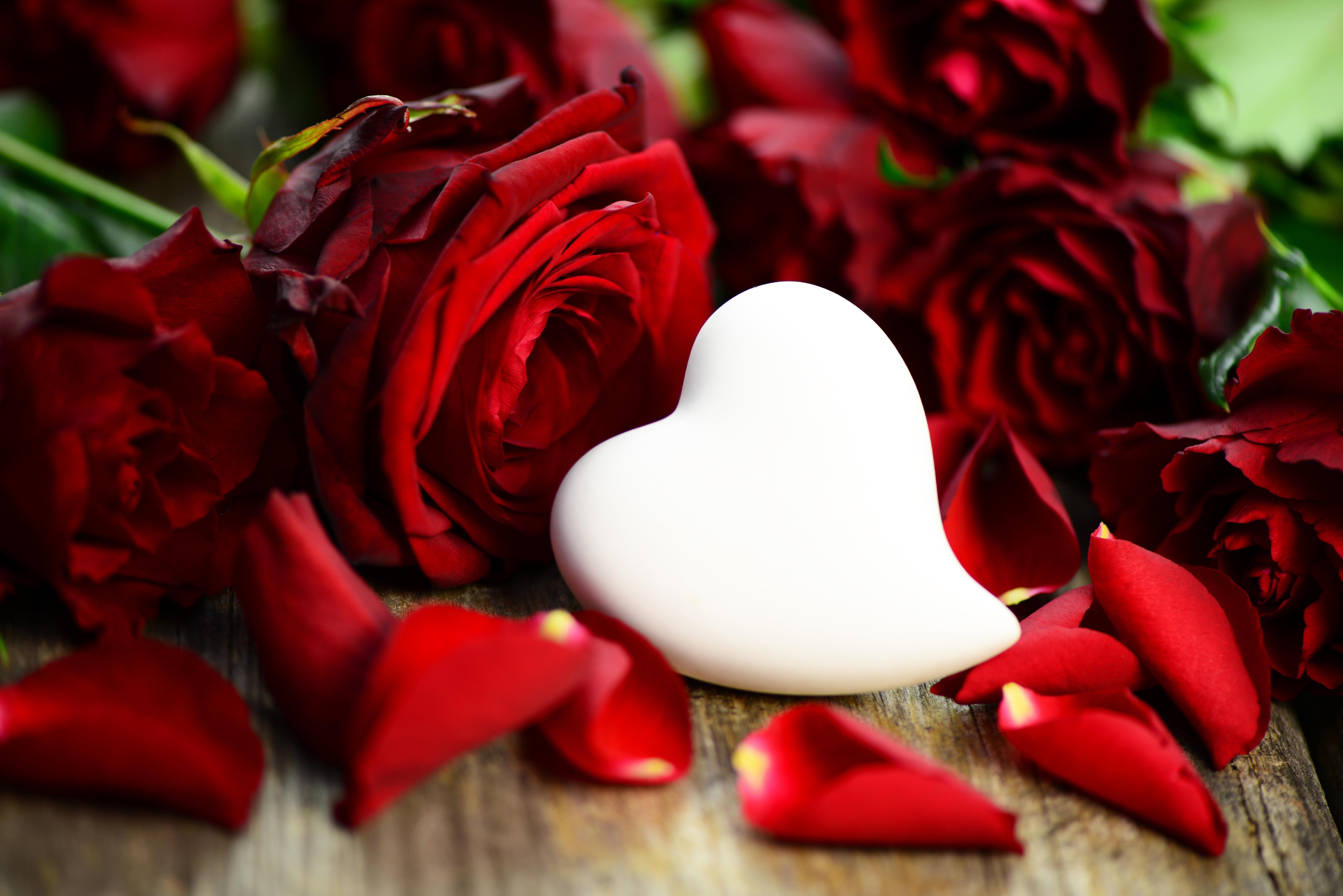 Смешная женщина, открытки романтические цветы