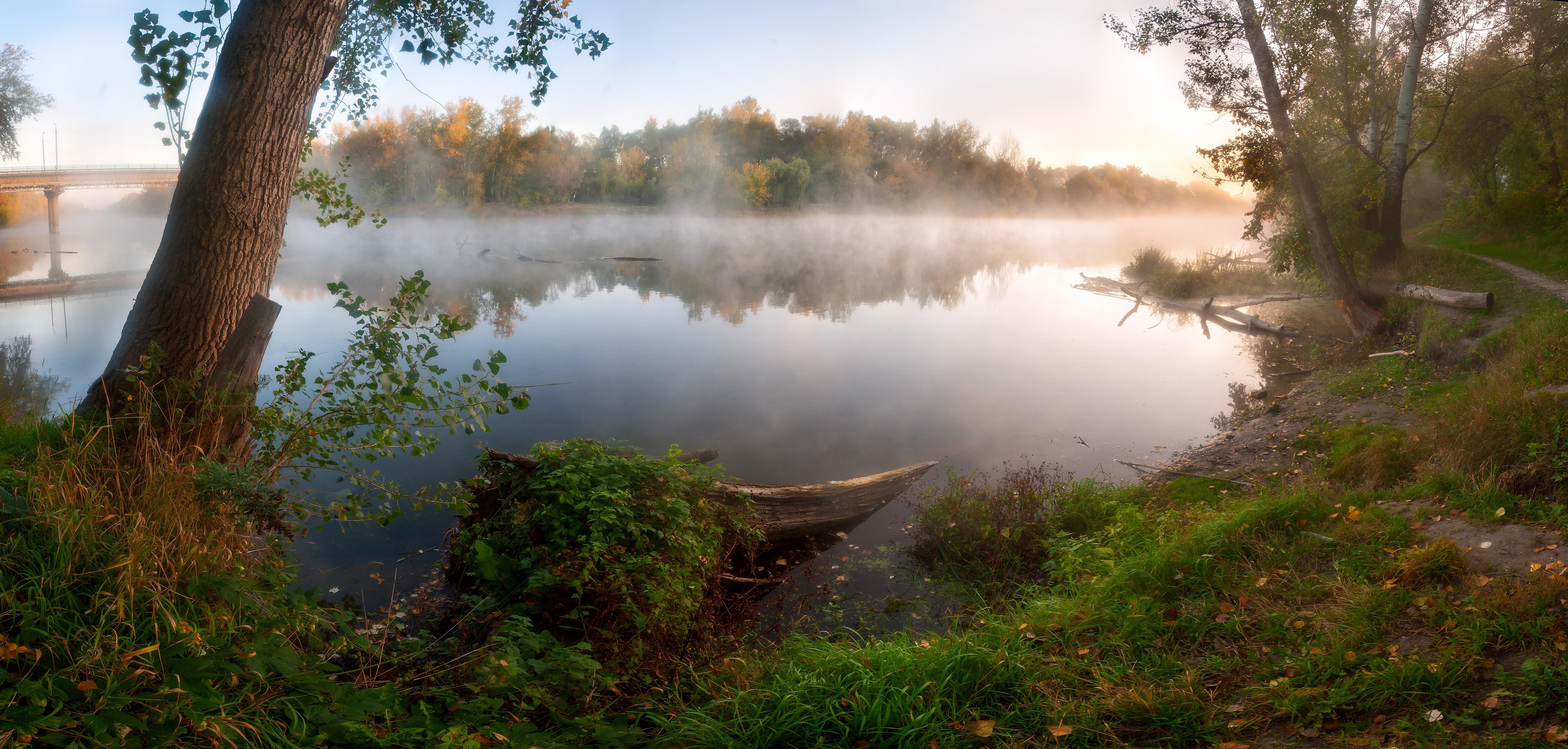 Туман вдоль реки  № 1281331  скачать