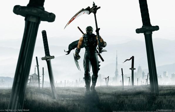 Picture field, warrior, art, braid, battle, heroes, ninja, cloak, swords, ninja gaiden 2, katana