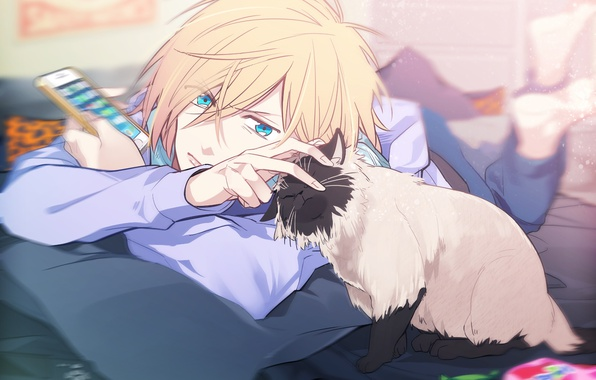 wallpaper cat look anime art guy yuri yuri on ice yuri on the
