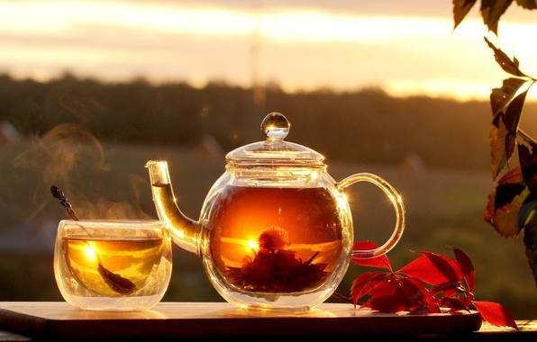 Picture leaves, background, widescreen, Wallpaper, tea, hot, food, the tea party, wallpaper, widescreen, background, full screen, …