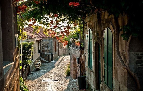 Picture the city, street, France, home, bridge