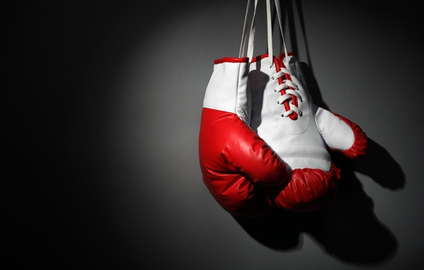 Picture Boxing, boxing, martial art, Boxing gloves, hang, wallpaper., gray background, beautiful background, beautiful background, on …