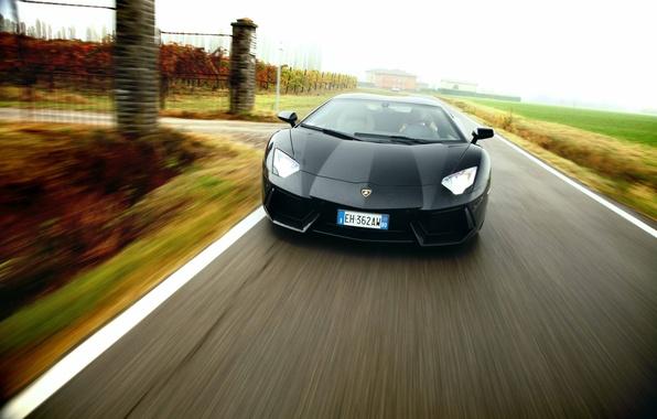 Picture Lamborghini, supercar, black, road, speed, LP700-4, Aventador