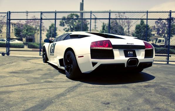 Picture Lamborghini, City, cars, auto, Murcielago, White, Supercars, wallpapers auto, Race car, Photography, lamborghini murcielago