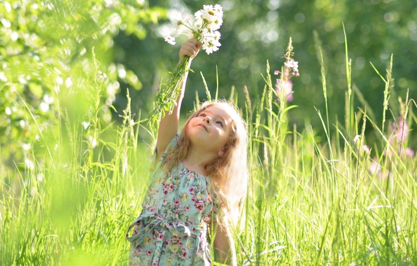 Picture summer, girl, dandelions