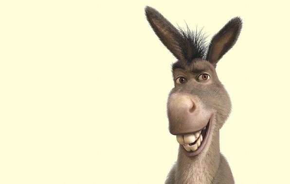 Picture smile, Shrek, donkey, soup, Shrek