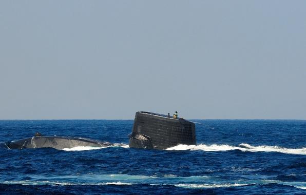 "Picture sea, submarine, type, ""Harusi"", SS-506"