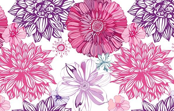 Picture line, flowers, Wallpaper, paint