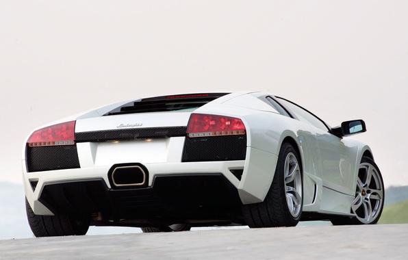 Picture lights, Lamborghini, white, Murcielago
