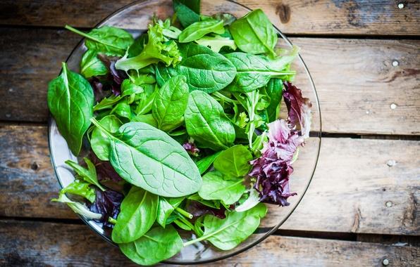 Picture green, salad, leafy vegetables
