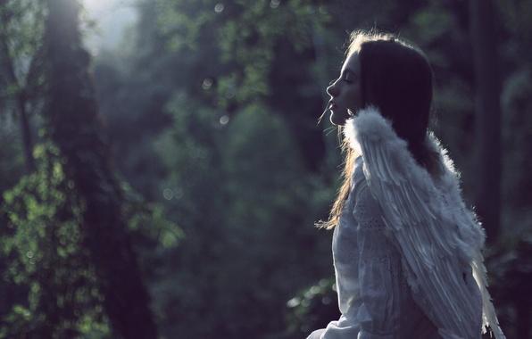 Picture mood, wings, angel, girl, bokeh