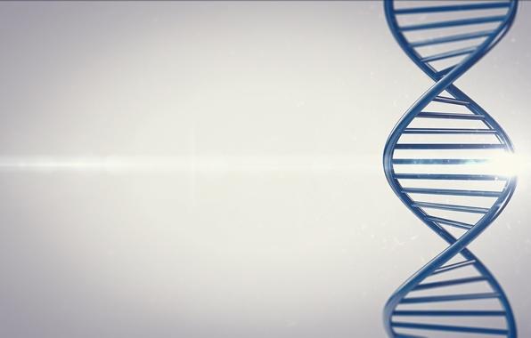 Picture DNA, render, dna