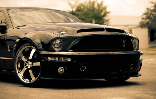 Picture black, Mustang, Ford, Shelby, GT500, Mustang, muscle car, black, Ford, Shelby, muscle car