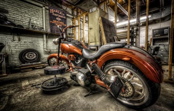 Picture Harley, bike, ride