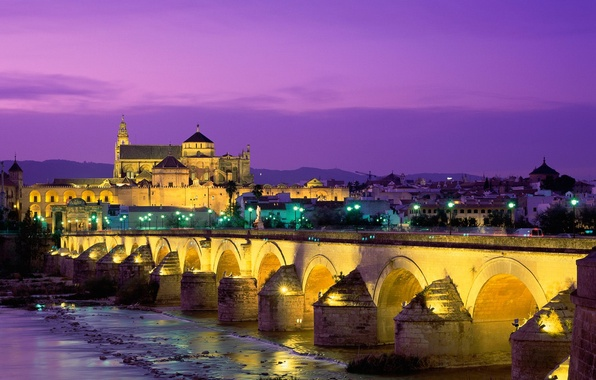 Photo wallpaper Roman bridge, Cathedral, Spain, Cordoba