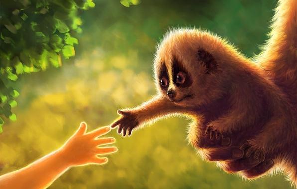 Picture baby, art, Lori, hand, foliage, animal, greens, cub, Jiang Zhi