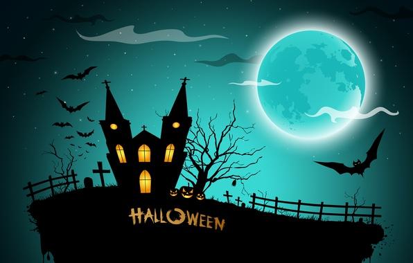 Picture house, cemetery, pumpkin, horror, horror, Halloween, house, scary, halloween, midnight, bats, pumpkins, midnight, creepy, full …