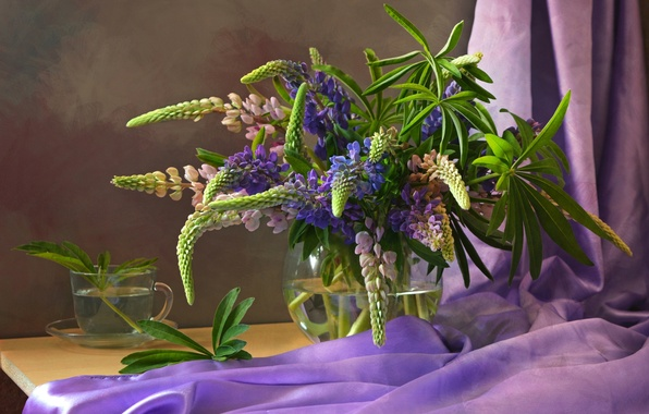 Picture purple, bouquet, fabric, Lupin