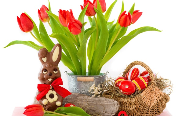Picture eggs, Easter, tulips, red, flowers, tulips, eggs, easter, bunny