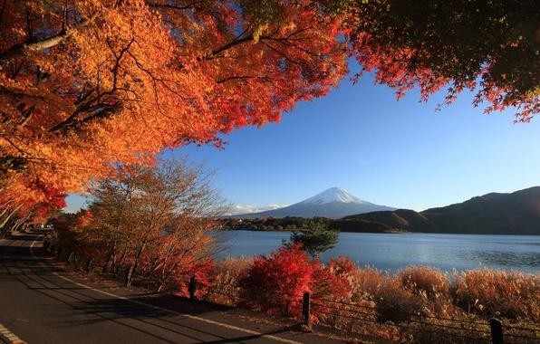 Picture road, autumn, the sky, trees, lake, mountain