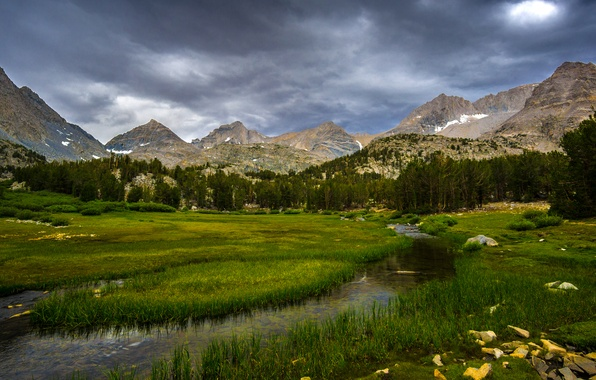 Picture forest, grass, trees, mountains, stream, stones, rocks, glade, CA, USA, Inyo National Forest